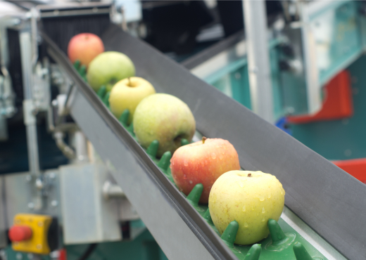 Apples on a Conveyor