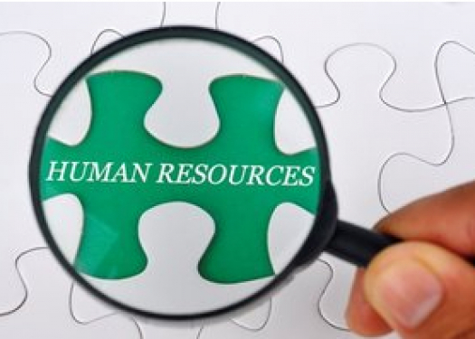 Human Resources Graphic